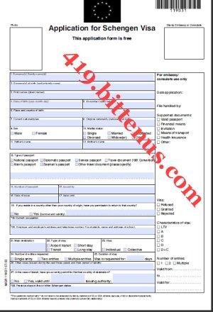 us visa application form pdf