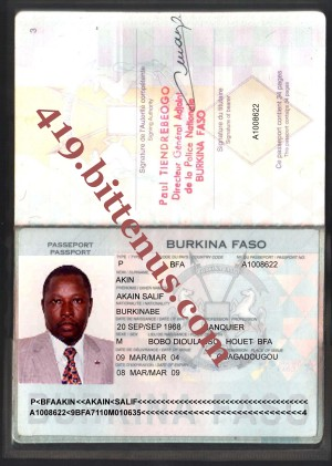 Akin international passport