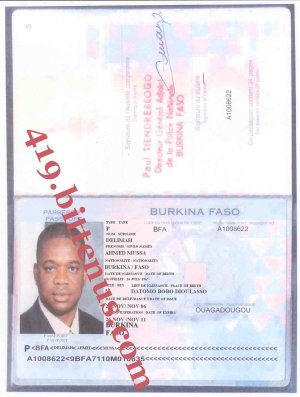 MY PASSPORT AHMED MUSSA DELIMAH