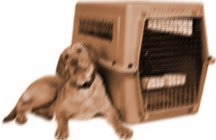 PAC makes pet relocation as safe and worry free as possible!