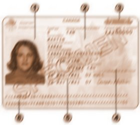 Identification page of the