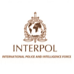 Image result for interpol police